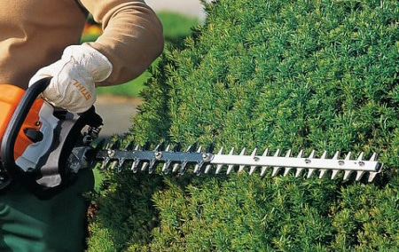 hedge_cutting_buckinghamshire_UK